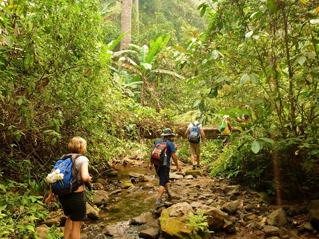 jungle-trekking-laos