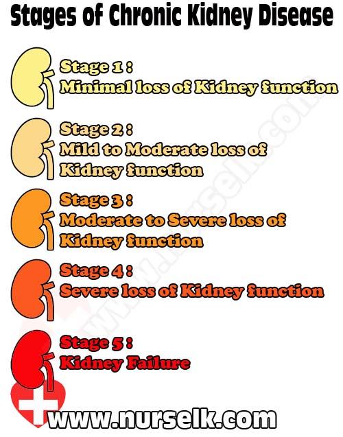 Stages Of Chronic Kidney Disease Nurselk Com