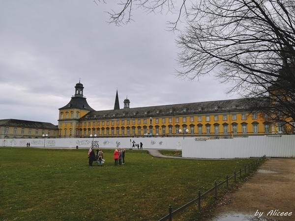 de-vizitat-universitatea-din-Bonn