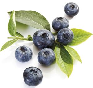 Elemen Yang Terkandung di Buah Blueberry