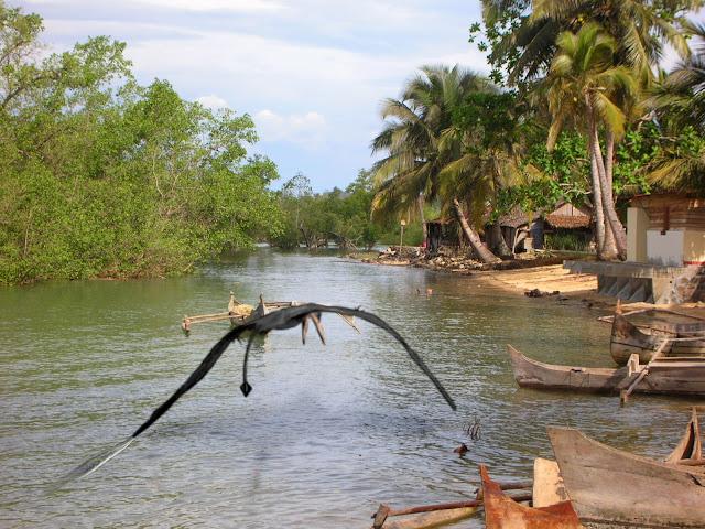 penampakan ropen di siang hari di papua new guinea
