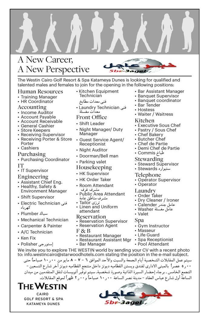 """وظائف للجنسين للمؤهلات """" العليا والدبلومات والعمال """" بجريدة الاهرام والمقابلات تبدأ 6 مايو 2016"""