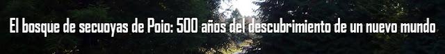 http://www.naturalezasobreruedas.com/2017/02/el-bosque-de-secuoyas-de-poio.html