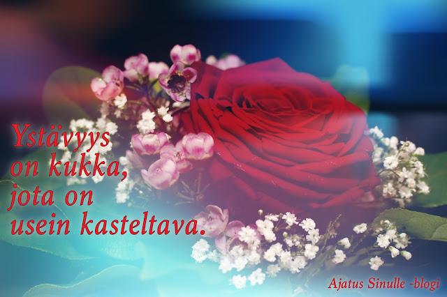 ruusu ystävälle, ystävänpäiväkortti, ystävyys