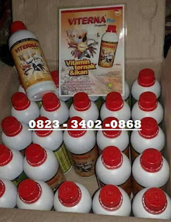 Jual Viterna Plus Nasa Di NGLIMAN NGANJUK 082334020868
