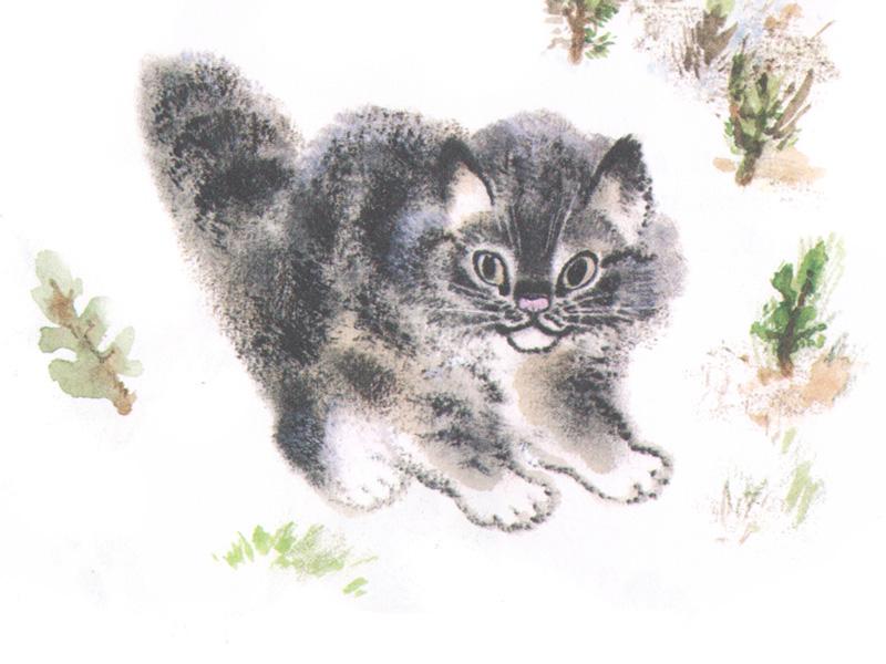 буквы евгений чарушин рисунки животных неправильном поведении зеркалами