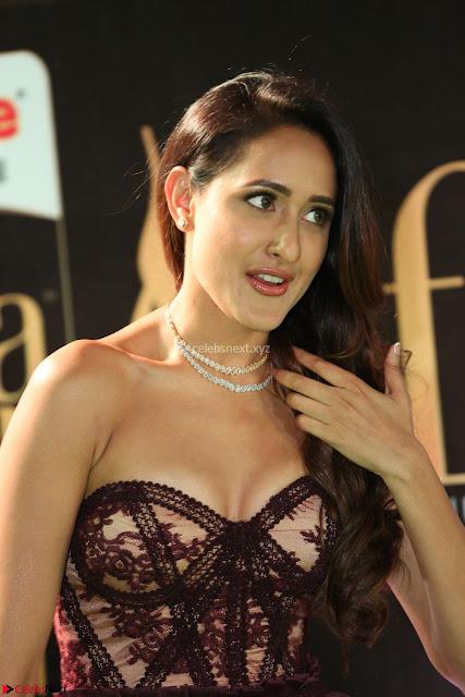 Pragya Jaiswal Sizzles in a Shantanu Nikhil Designed Gown  Exclusive 001.JPG