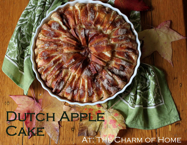 Dutch Apple Cake: The Charm of Home