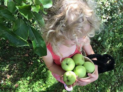 la petite fille aux pommes et au sac poilu