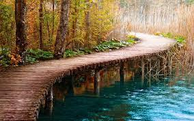 world best bridge hd wallpaper17