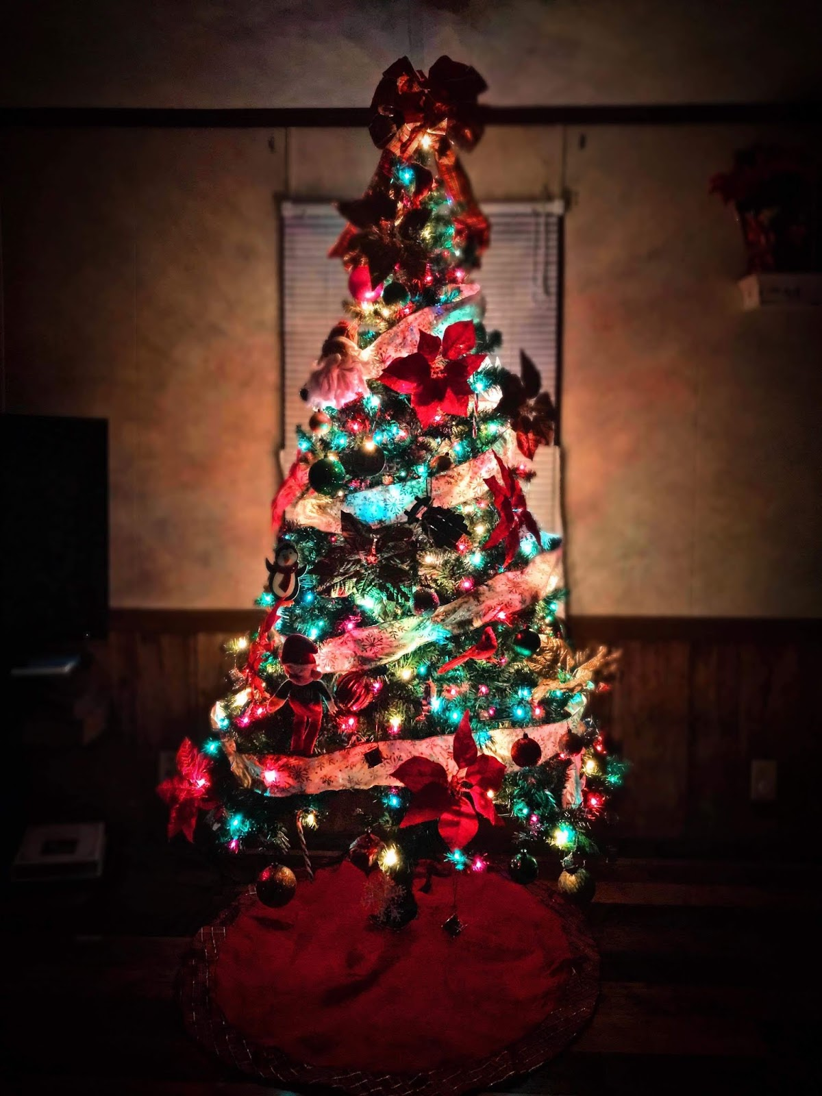 Why I Begin Celebrating Christmas Before Thanksgiving: H54F - Della Devoted