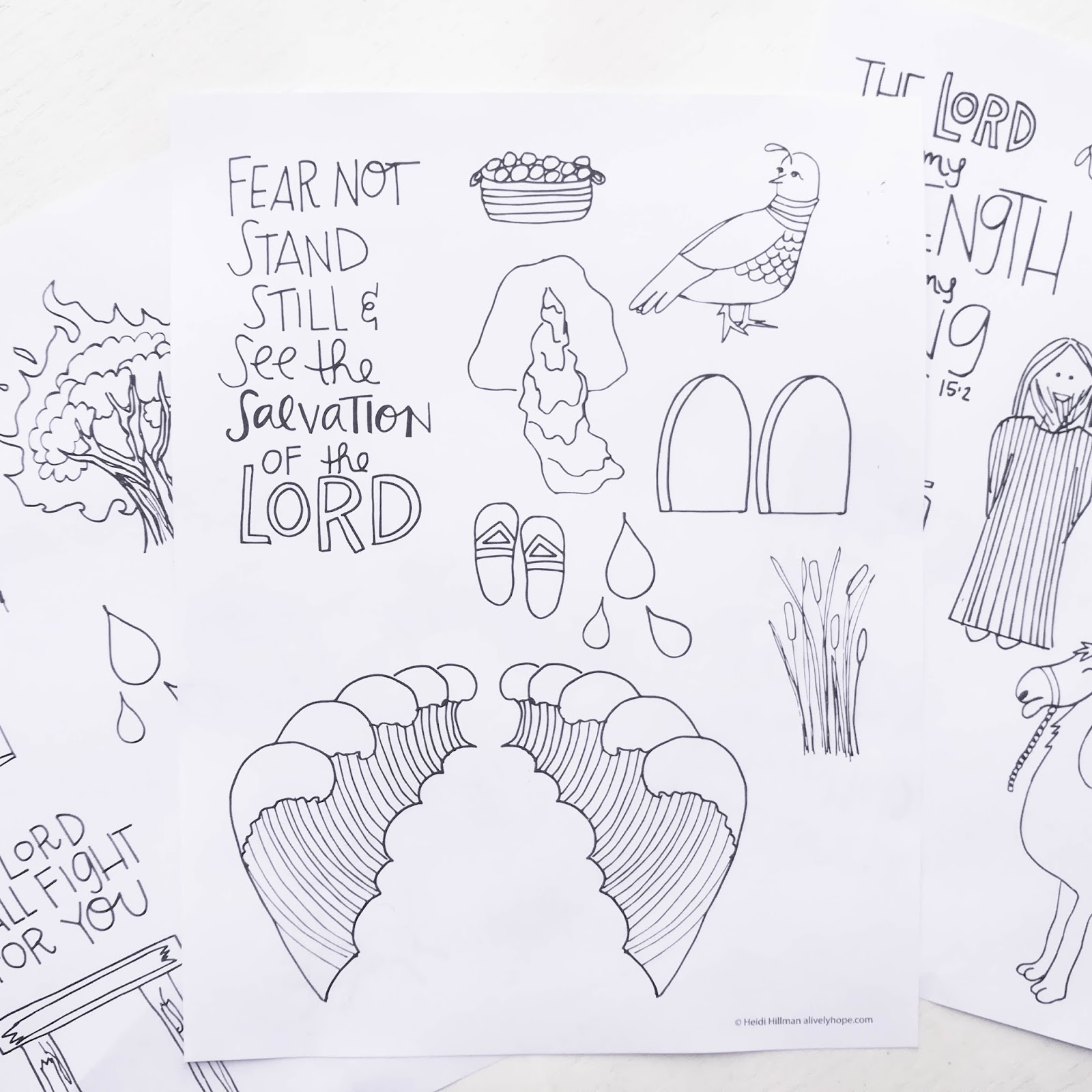 A Lively Hope Exodus And Leviticus Scripture Doodles Free Printable