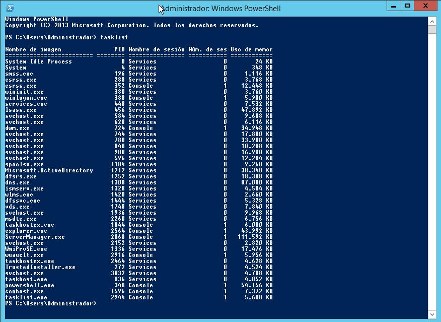 Ejecutando tasklist en un entorno Windows