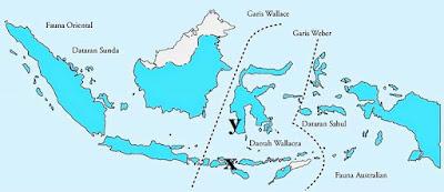 Kunci jawaban soal USBN Geografi