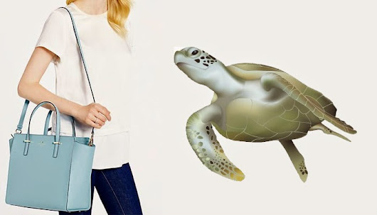 Kate Spade & Sea Turtles: On Being Judged By Your Cover