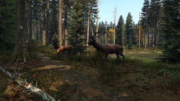 dayz-pc-screenshot-www.ovagames.com-1