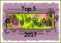 TOP 5 - August 2017: In my Garden