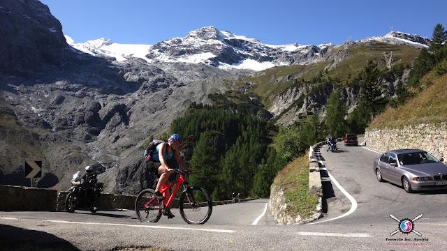 Trail Guide Vinschgau Godseetrail