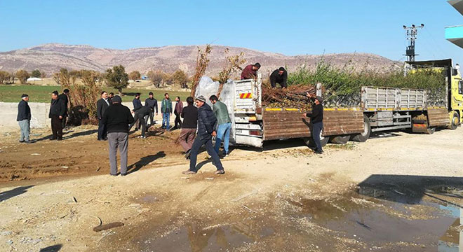 Diyarbakır Büyükşehir Belediyesi, Lice'de çiftçilere 11 bin fidan dağıttı