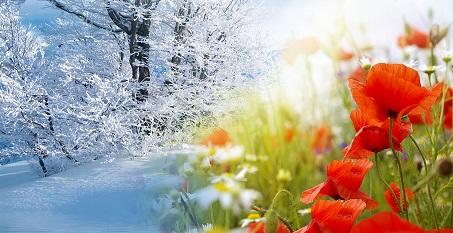 Iarna si primavara