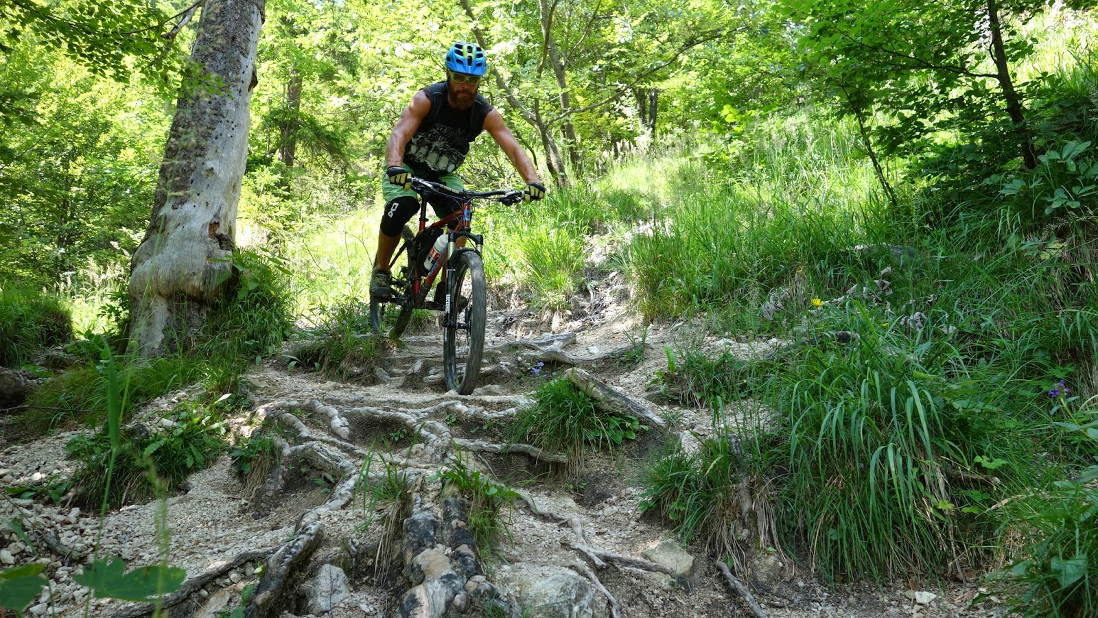 Technischer Trail Inntal Feuerköpfl (Buchacker) - FIREHEAD :) MTB