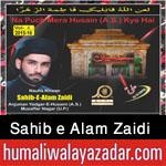 http://www.humaliwalayazadar.com/2015/10/sahib-e-alam-zaidi-nohay-2016.html