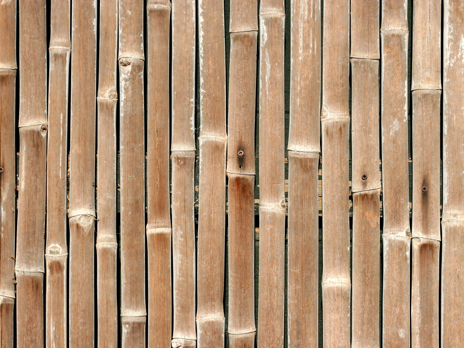 Wallpapers bamboo wall wallpapers for Wallpapering a wall