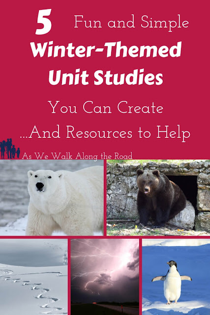 Winter-themed unit studies