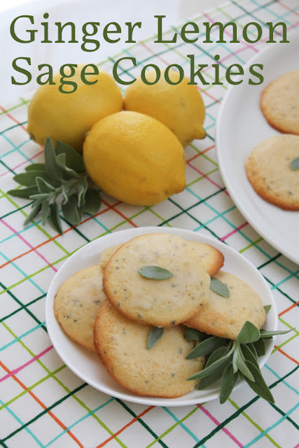 Food Lust People Love: These ginger lemon sage cookies combine ground ginger, lemon and sage for bright tart bites that go perfectly with a cup of tea.
