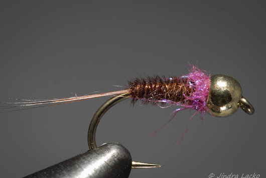 Grayling on the Fly: Violetta