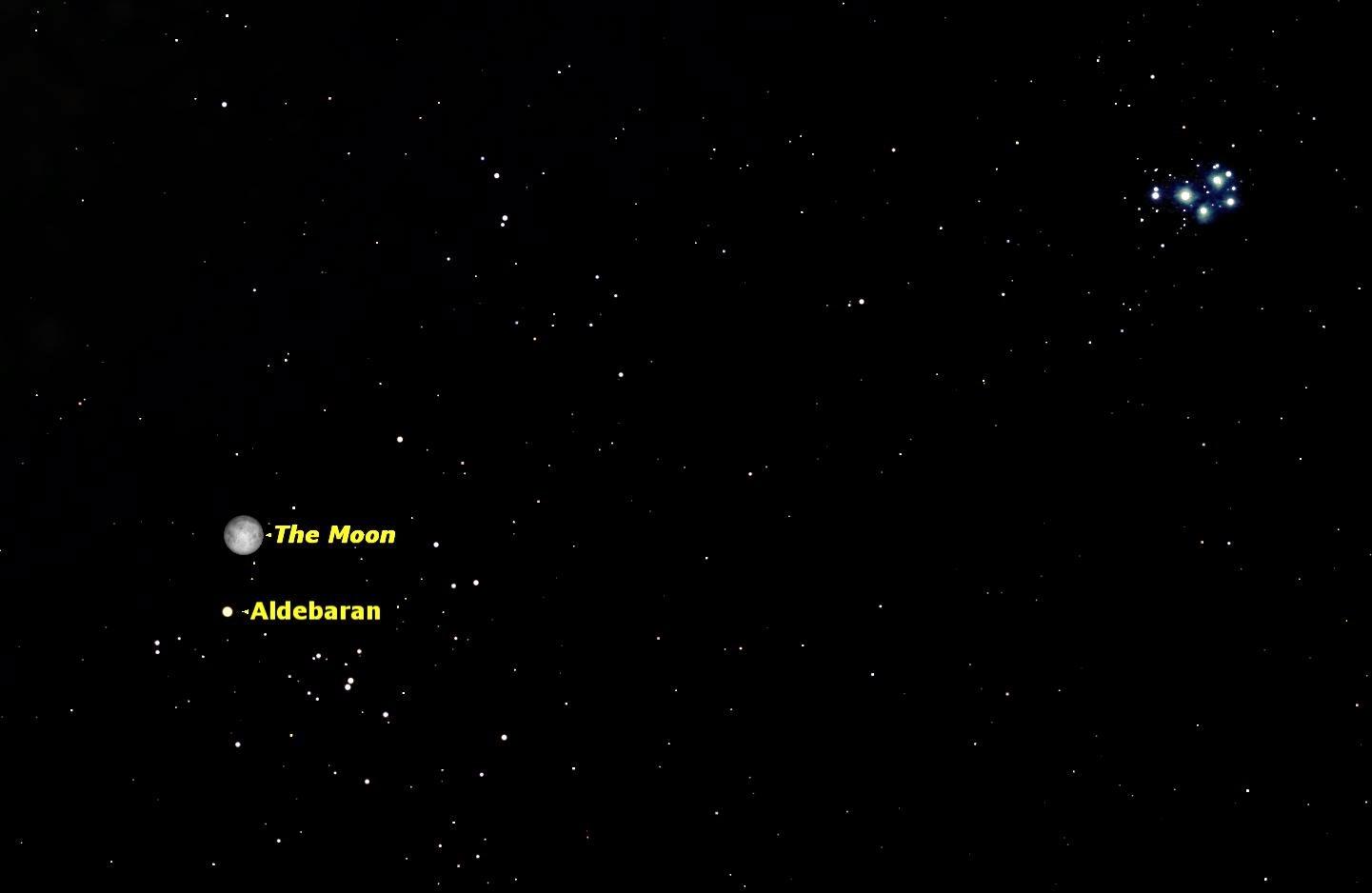 Starry Night Sky Events: December 2014