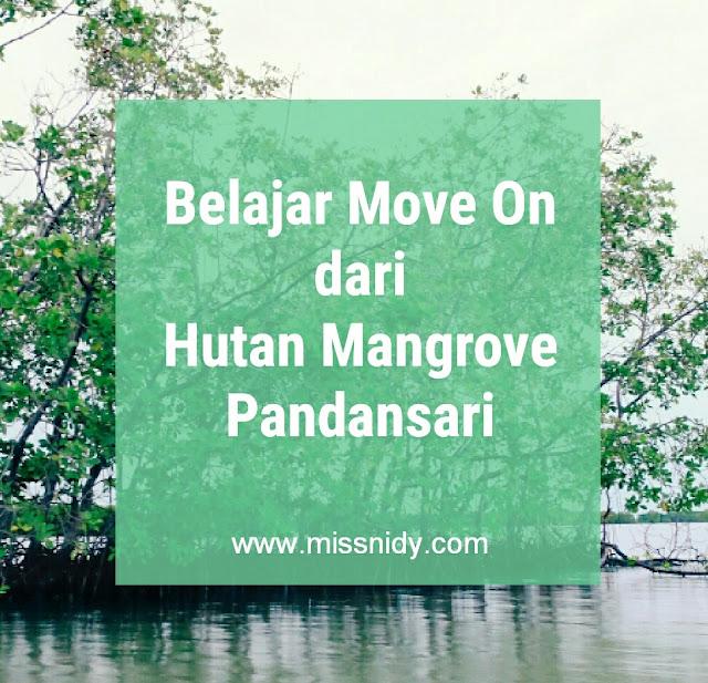 hutan mangrove pandansari brebes