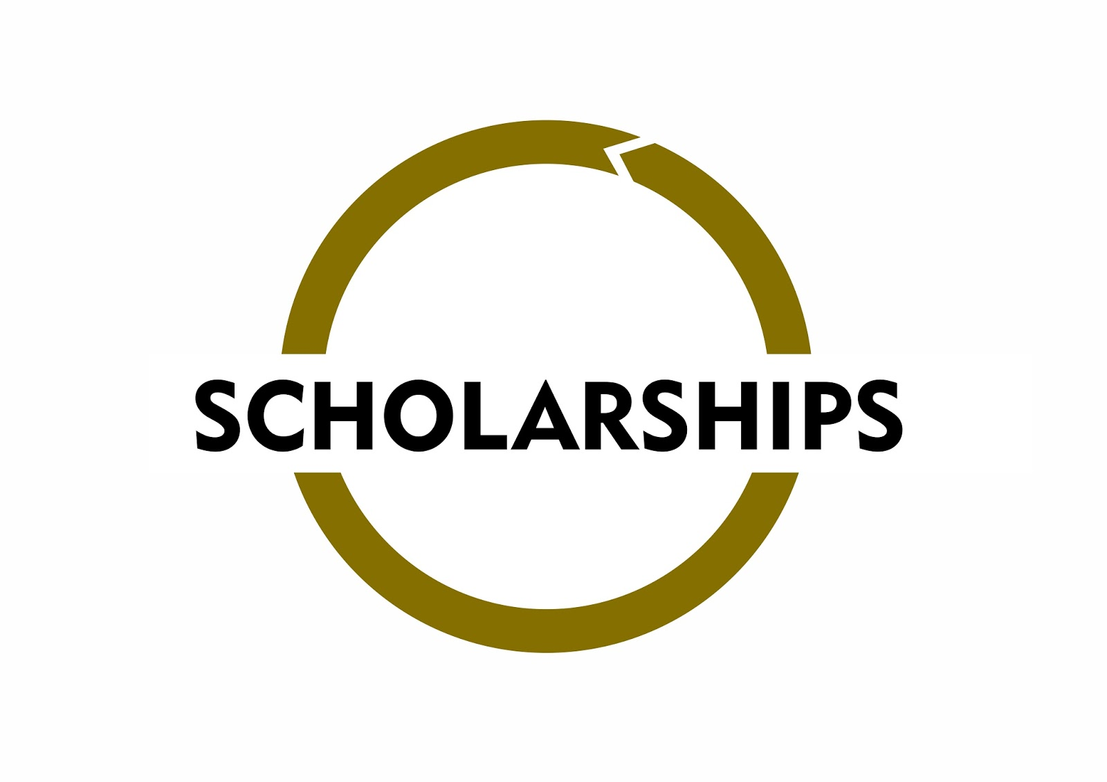 Image result for chinese scholarship