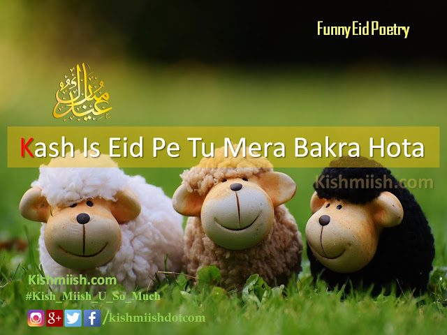 Urdu Poetry, Shayari, Eid Poetry, Eid Poetry in Urdu, Eid Al Azha Poetry, Eid Al Fiter Poetry, funny Eid poetry, Urdu Poetry Images, Islam Poetry, Urdu Eid Quotes, Love Shayari, Urdu Shayari, Love Poetry, Sad Urdu Poetry, Romantic Poetry, Best Urdu Poetry, Love Urdu Poetry, Hindi Shayari,