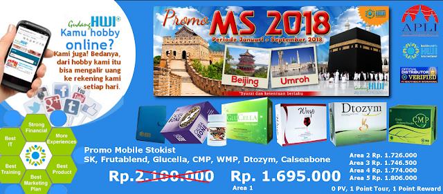 Promo paket MS 2018 HWI