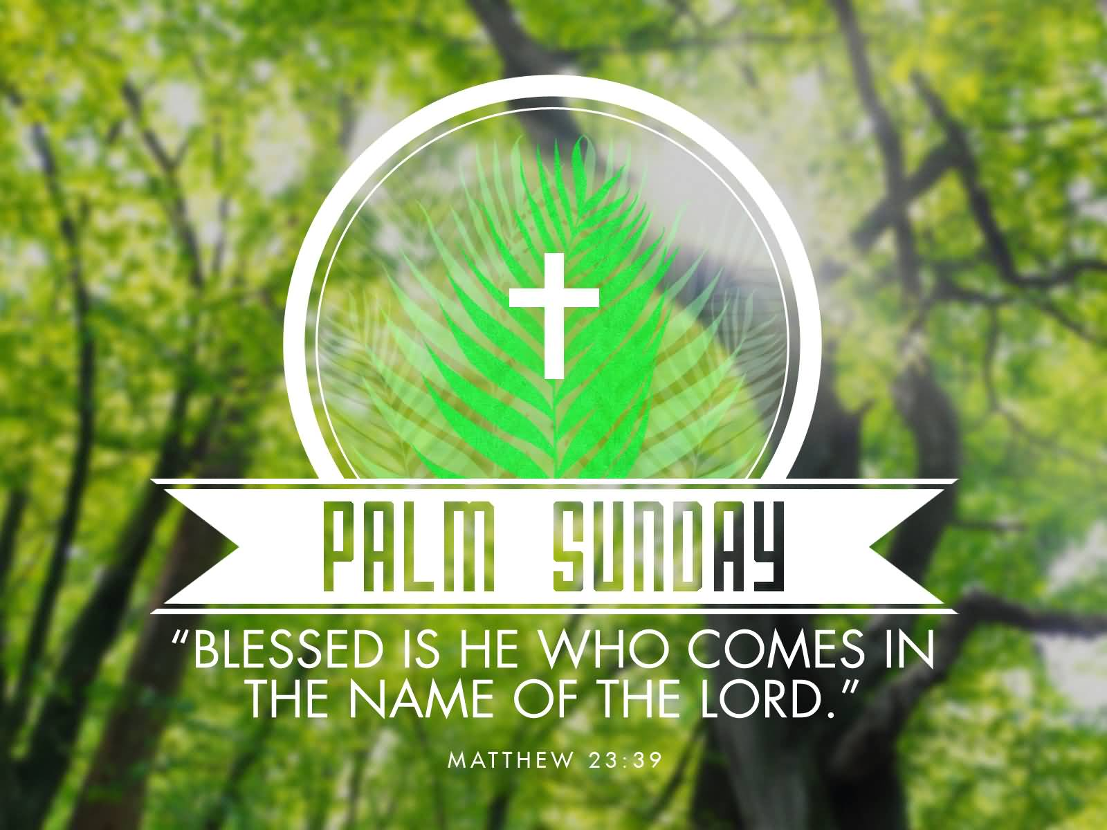 Happy palm sunday 2018 wishes quotes pictures images messages sms happy palm sunday photos 2018 m4hsunfo