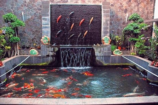 40 Gambar Kolam Ikan Minimalis (Kolam Ikan Koi, Kolam Ikan ...