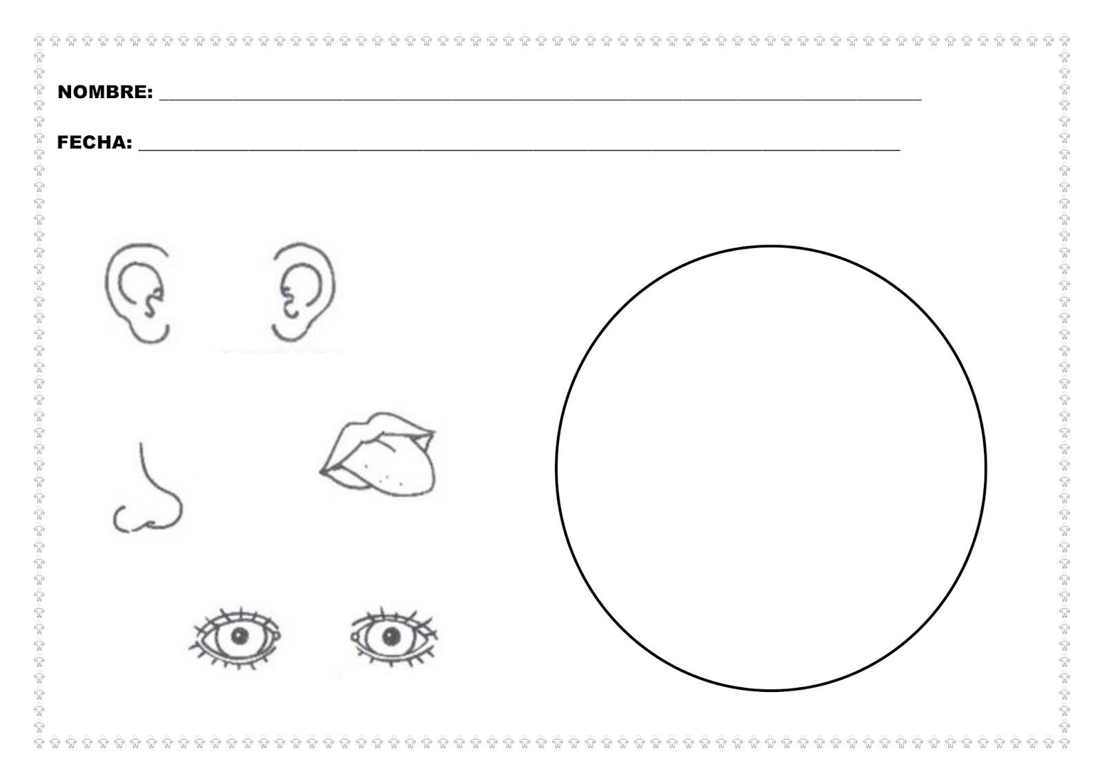 Dibujos De Aplicacio De Partes De La Cara: Trabajando Con Personitas: ¿Qué Tenemos En La Cara?