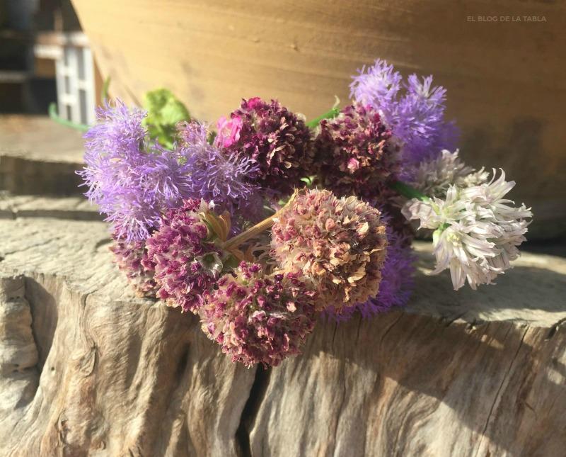 Deadheading. cebollino (Allium schoenoprhasum), Armeria marítima y Ageratum