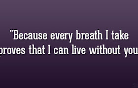 can live without you quotes