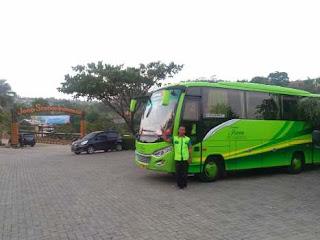 Rental Bus Medium Jakarta, Rental Bus Medium, Bus Medium Jakarta