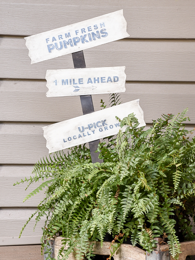 Dollar tree garden stakes