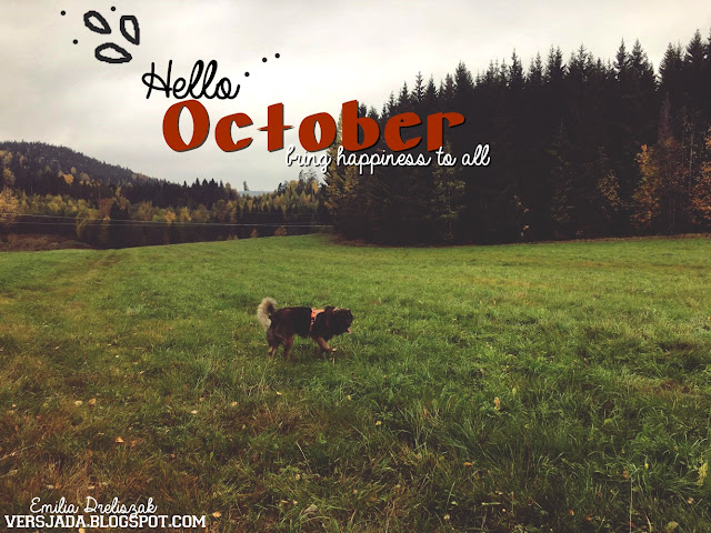 October, inspiration, tumblr, Leonberger,