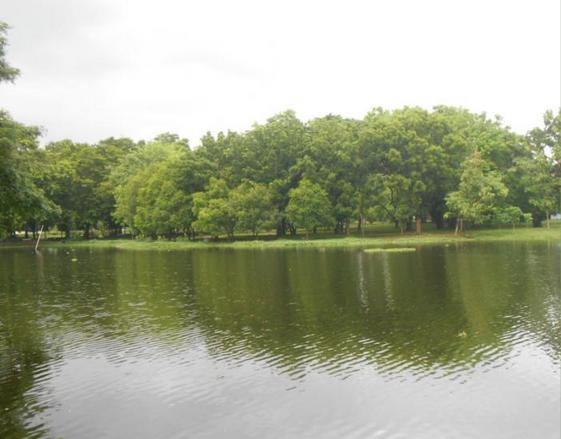 danau di Universitas Hasanudin