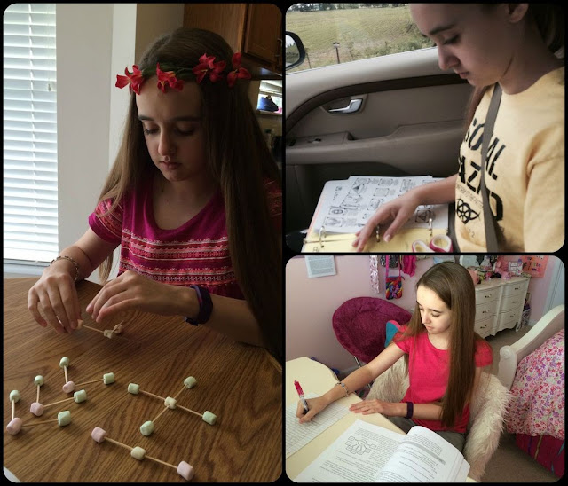 Unexpected Homeschool: Year Round Homeschooling