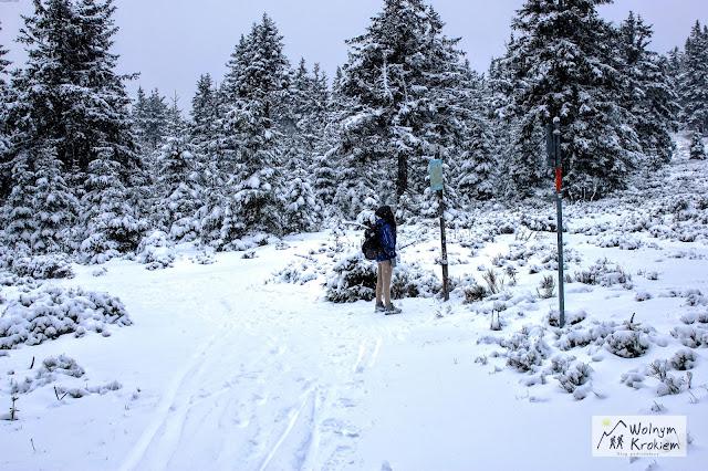 Rudawiec zimą granica polsko-czeska