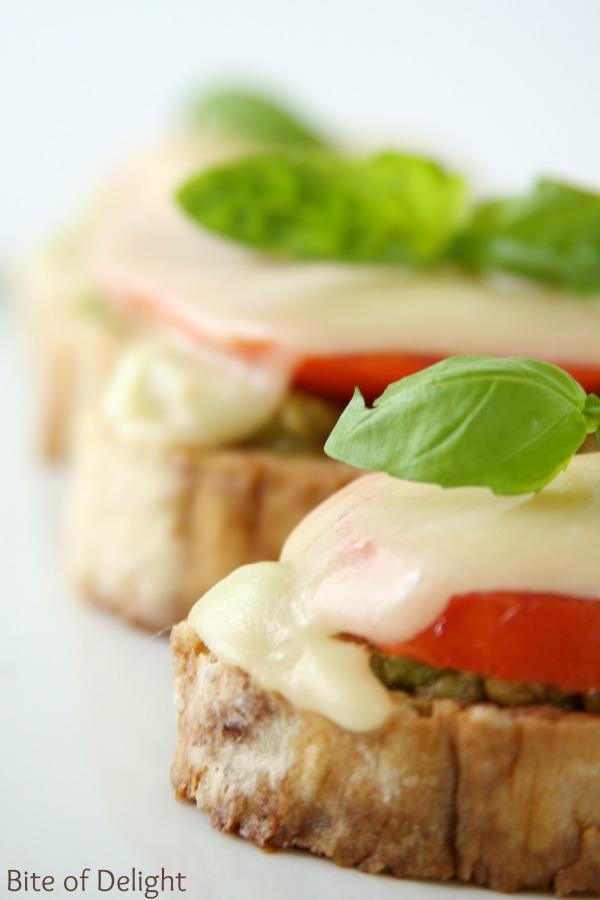 3 cheese avocado tomato melts   easy recipe