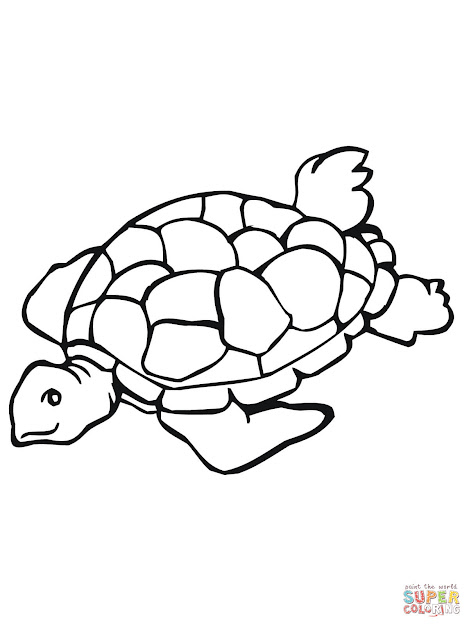 Click The Sea Turtle Coloring