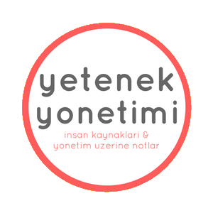 yetenekyonetimi author