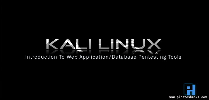 Introduction To Web Application/Database Pentesting Tools In
